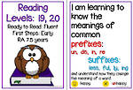 Fluent Reading | Levels 19,20 | Learning Goals | Flip Charts