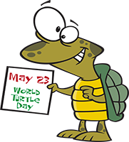 TOONS-today-turtle-day